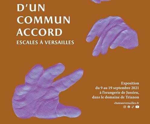 Une exposition d'envergure au Château de Versailles proposée par des personnes avec troubles psychiques
